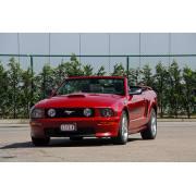 Mustang08