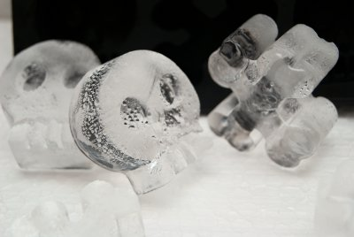 Lodowe kości