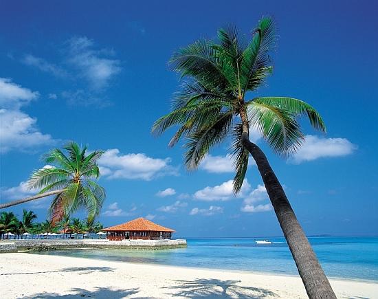 Wycieczka na Karaiby