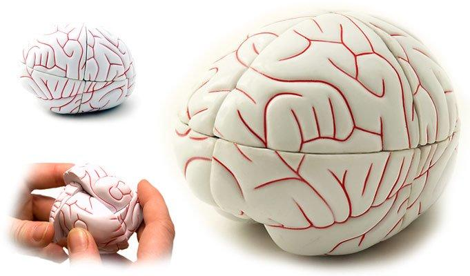 Łamigłówka mózg