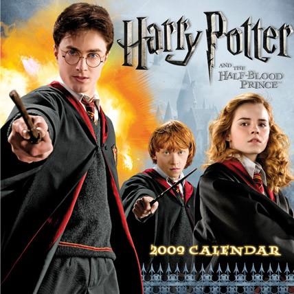 Oficjalny kalendarz Harry Potter na 2009 r :)