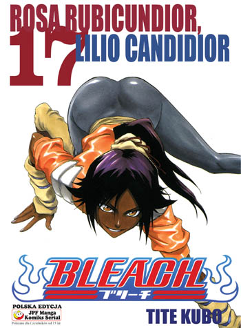 Bleach tom 17