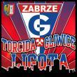 Bilet na mecz Górnik-Piast