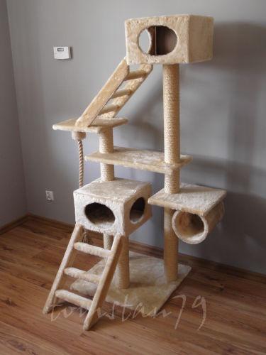 Wypasiony drapak dla kotów