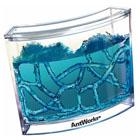 Akwarium dla mrówek