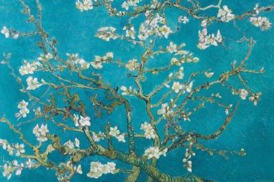 Kwitnący Migdałowiec - Van Gogh plakat