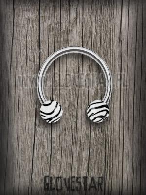 kolczyk zebra
