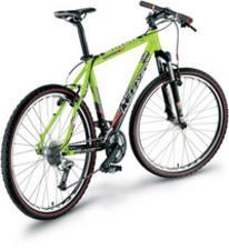 Rower MAGNUS green