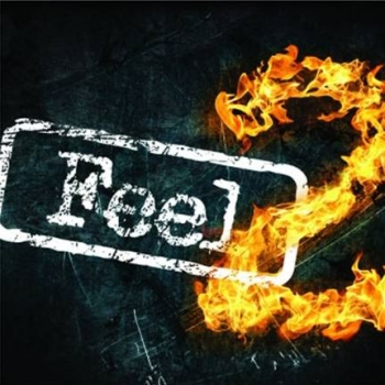 Płyta ' Feel2 '