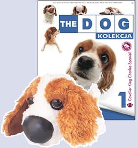 Cała kolekcja piesków THE DOG