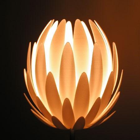 Lily.Mgx piętro światła przez Janne Kyttanen