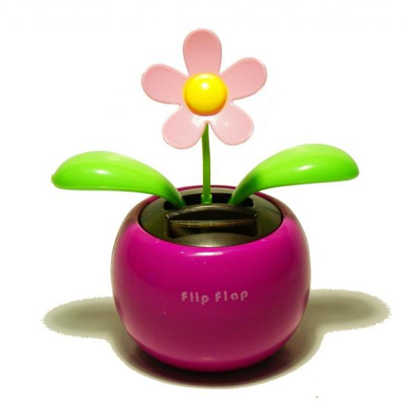 Solarny kwiatek
