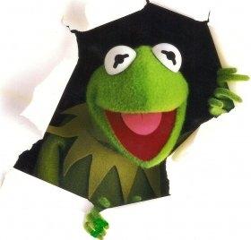 Koszulka z nadrukiem Kermit