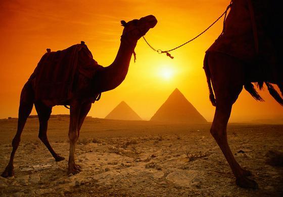 Wakacje w egipcie:D
