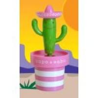 tańczący kaktus