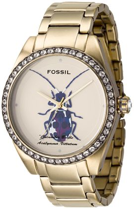 FOSSIL 1