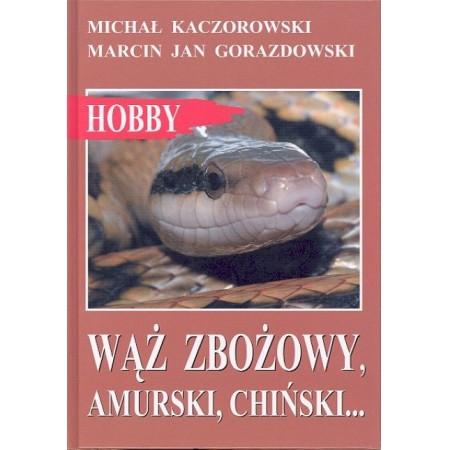 Wąż zbożowy amurski chiński
