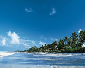 Wycieczka Na Bahamy