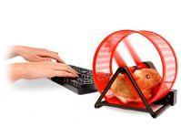 Biegający chomik na USB