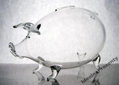 Świnka skarbonka szklana